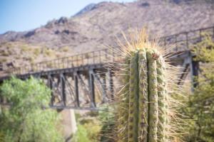 Puente El Parral 01_0012 (Small)