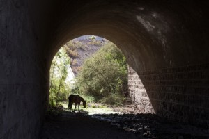 Puente El Parral 02_0004 (Small)