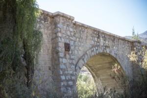 Puente Laja_0019 (Small)